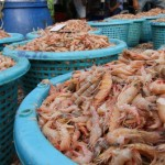 """Slavery in shrimp industry: Thai govt says it """"found it first"""""""