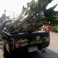 Khun Ice garden delivery truck